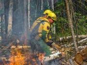 Die Feuer haben laut der Forstverwaltung mittlerweile eine Fläche von mehr als drei Millionen Hektar zerstört. (Bild: KEYSTONE/)