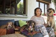 Edith Zellweger in ihrem Zuhause. Die 65-Jährige ist eine bekennende Sympathisantin der Tierbefreiungsfront. (Bilder: Adriana Ortiz Cardozo)
