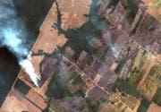 Brände und gerodete Waldfläche im Amazonasbecken. (Bild: Keystone)