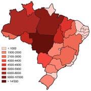 Mit Abstand am meisten Waldbrände gab es im gesamten Jahr 2019 bisher im brasilianischen Bundesstaat Mato Grosso. Stark betroffen sind auch die Bundesstaaten Pará, Amazonas, Tocantins und Rondônia. (Bild: Watson/queimadas.dgi.inpe.br)
