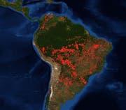 Waldbrände in Südamerika, Stand 23. August 2019. Die meisten Brände gibt es im Süden des Einzugsgebiets des Amazonas. Aber auch andere Regionen in Brasilien und weitere Länder in Südamerika sind betroffen. (Bild: Nasa/Modaps)