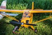 Dieses Flugzeug, eine Piper J-3 Cup, ist eines der Modelle, das in Mosnang in den Himmel steigt. (Bild: Urs Bucher)