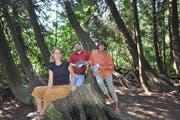 Rahel Wohlgensinger, Julian Fitze vom Seemuseum und Dorena Raggenbass schätzen die Vielfalt, die der Seeburgpark bietet. (Bild: Hannah Engeler)