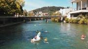 Rund 60 Teilnehmende des Gestalterischen Vorkurses der Hochschule Luzern schwammen die Reuss runter. (Bild: Christian Felber/Hochschule Luzern)