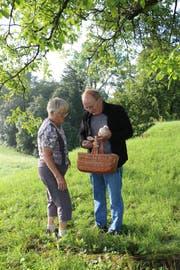 Heidi Ulrich und Rolf Schulthess sammeln auf einer Wiese Pilze. (Bild: Hannelore Bruderer)