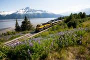 Über 750 Kilometer schlängelt sich der Zug durch Alaskas spektakuläre Landschaft. Bild: mauritius images, Axel Baumann