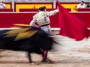 Die Rückkehr der Toreros auf Mallorca ist vom spanischen Verfassungsgericht ermöglicht worden. (Bild: KEYSTONE/EPA EFE/RODRIGO JIMENEZ)