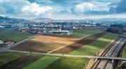 Für die Regio Wil eine enorme Chance, für Erika Häusermann ein Zubetonieren von Ackerland: Wil West. Bild: Hanspeter Schiess und Urs Bucher