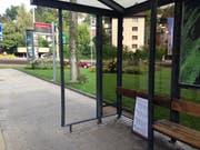Eingeschlagene Seitenscheibe und abgerissene Fahrplantafel: Die Bushaltestelle Rosenbergstrasse hatte am Montagabend Besuch von Vandalen. (Bild: Reto Voneschen - 10. September 2019)