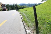 Vier metallene Pfosten wurden beim Unfall umgefahren und beschädigt. (Bild: Stadtpolizei St.Gallen)