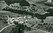 Die frühere Zwangsarbeitsanstalt Bitzi in Mosnang auf einer Flugaufnahme aus den 1960er-Jahren. Bild: M. Eggler, Jona/Staatsarchiv St.Gallen
