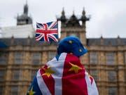 Anti-Brexit-Demonstrant vor dem Parlamentsgebäude im Zentrum Londons. (Bild: KEYSTONE/EPA/WILL OLIVER)