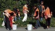In der ganzen Schweiz sammeln Schulen, Vereine, Gemeinden und Unternehmen am Freitag und Samstag Abfall. (Bild: APZ)