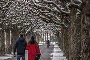 Der Carl-Spitteler-Quai entlang des Vierwaldstättersees in der Stadt Luzern wurde nach dem Schriftsteller benannt. Hier zeigt er sich im romantischen Winterkleid. (Bild: Pius Amrein, 3. Januar 2017)