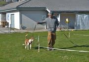 In Hundekursen wird unter anderm die Leinenorientierung oder der Rückruf trainiert. Im Bild ein Hundekurs in Buochs im Kanton Nidwalden. (Bild: Bettina Schuler/PD)