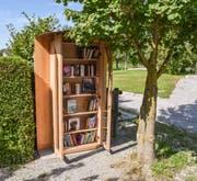 Der neue Bücherschrank steht in unmittelbarer Nähe zum Tscharnerhaus. (Bild: Samuel Koch)