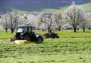 Müssen den CO2-Ausstoss bis 2050 nicht reduzieren: Luzerner Bauern. (Symbolbild Keystone)