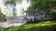 Auf der Grünfläche wird das Podest eingerichtet. (Bild: Stadt Luzern)