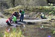 Junge Forscher am Wasser. (Bild: PD)
