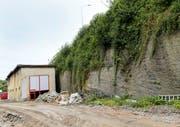 In dem Gebäude befinden sich Nistplätze des in der Schweiz geschützten Mauerseglers. Nach Abriss des Gebäudes soll es neue Nistmöglichkeiten an der Mauer geben. (Bild: Ines Biedenkapp)