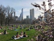 Mehr als 40 Millionen Menschen kommen jedes Jahr in den New Yorker Central Park - nur rund 2,5 Millionen schauen jedoch am Nordende vorbei. Dieses soll nun aufgewertet werden. (Bild: KEYSTONE/EPA/JASON SZENES)