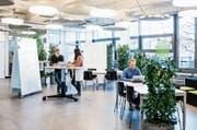 In den Räumen von Startfeld in St.Gallen ist ein Start-up-Ökosystem entstanden. Bild: Mareycke Frehner (St.Gallen, 20. Dezember 2018)