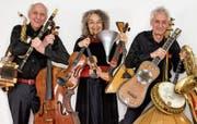 Johannes Kobelt, Katharina Kobelt und Adrian Bodmer beherrschen zusammen virtuos rund 40 Musikinstrumente. Bild: PD