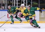 Michael Loosli (vorne, gegen Langenthals Alain Bircher) spielte bei seiner Rückkehr für den HC Thurgau so, als wäre er nie weg gewesen. (Bild: Mario Gaccioli)