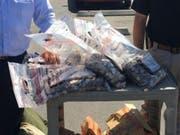 Die in Münz geraubte Summe von 6000 US-Dollar hatte ein Gewicht von knapp über 136 Kilogramm. (Bild: Bakersfield Police Departement)