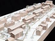 So soll die «neue» Gartenstadt aussehen: Blick vom Südosten der Aabachstrasse auf die geplanten Mehrfamilienhäuser. (Visualisierung: PD)