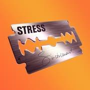 Stress Sincèrement (Universal). Erscheint am 4. Oktober. Tourstart am 6. Dezember.