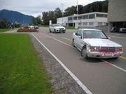 Der Autolenker geriet in die Rosenbeete. (Bild: Kantonspolizei Schwyz)
