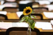 Eine Sonnenblume im Nationalratssaal – ob die zeitsensible Blume in der Nacht transportiert wurde? (Bild: Keystone)