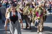 Familie Distel von der Alp Hintersteinetli auf dem Weg zurück ins Tal. (Bild: Boris Bürgisser)