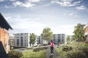 Der Bebauungsplan Neuschwand in Emmen sieht den Bau von rund 155 Wohnungen vor. (Visualisierung: PD)
