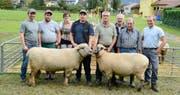 Die Mitglieder des BFS-Schafzuchtvereins Buchs pflegen ihr Hobby mit Freude und Können. Daniel Dörig (Vierter von links) zeigt Heinek, den gewählten Mister. Leonhard Dörig (Vierter von rechts) präsentiert die Miss BFS Babuschka.Bilder: Hansruedi Rohrer