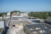 Die Abwasserreinigungsanlage Altenrhein ist dank der 4. Reinigungsstufe eine der innovativsten der Welt. (Bilder: Adriana Ortiz Cardozo)