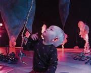 Beim Projekt «The Garden of Spirited Minds» können sich die Kleinsten durch einen Erlebnisraum bewegen. (Bild: PD)
