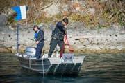 Polizeitaucher der Kantonspolizei St.Gallen während einer Einsatzübung am Walensee: Am Samstag sind sie am Polizeistützpunkt Thal zugegen. (Bild: Urs Bucher - 19. November 2015)