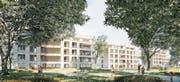 Die dreiteilige Wohnüberbauung «Riverenza» zwischen Murg und Waldeggstrasse ist das Siegerprojekt des letztjährigen Investorenwettbewerbs. (Bild: : PD/RLC Architekten AG)