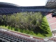 Was, wenn wieder mehr Bäume wachsen würden - sogar in einem Fussballstadion wie hier im österreichischen Klagenfurt? - Der Basler Klaus Littmann ist der Initiator des Projekts «For Forest». (Bild: KEYSTONE/APA/APA/GERT EGGENBERGER)