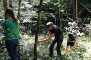 Lehrerinnen aus dem Werdenberg und Sarganserland begingen den Wald mit verbundenen Augen. (Bilder: Alexandra Gächter)