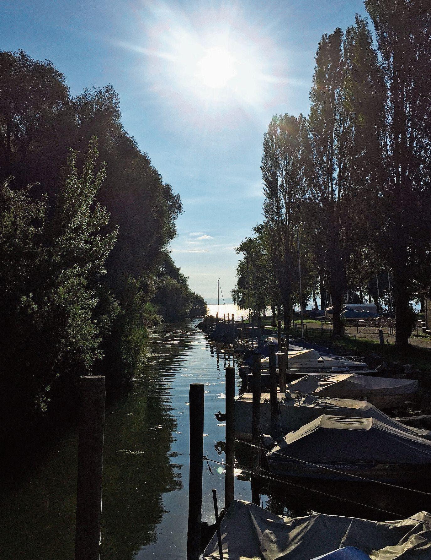 Bichelsee-balterswil meine stadt bekanntschaften flirt tirol kostenlos