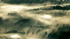 Das Rheintal am Montagmorgen im Nebelmeer, währenddem die Sonne langsam über den Horizont wandert. (Bild: Remo Schläpfer)