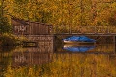Herbst am Wenigerweiher. (Bild: Franziska Hörler)