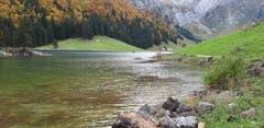Im Herbst am Seealpsee. (Bild: Klaus Businger)