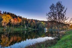 Der Wenigerweiher in Herbstfarben. (Bild: Luciano Pau)