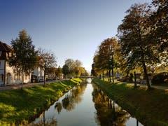 Der Binnenkanal in Widnau. (Bild: Beata Maria)