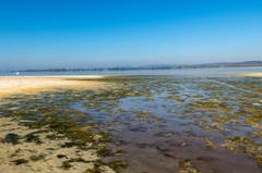 Die Weite des Ermatingerbecken zeigt sich noch mehr bei dem niedrigen Wasserstand. (Bild: Fritz Sigg)