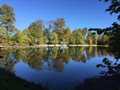 Tiefer Pegelstand und spiegelglatte Wasserfläche ab Bubenweier. (Leserbild: Janny van der Graaff - 15. Oktober 2018)
